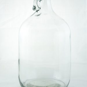 1 gallon clear glass handle jug